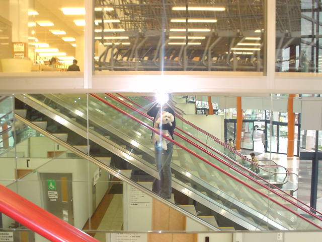 Nitoriescalator_2